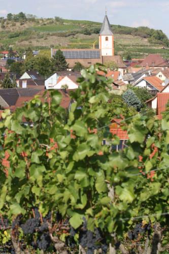 Sasbach Ort