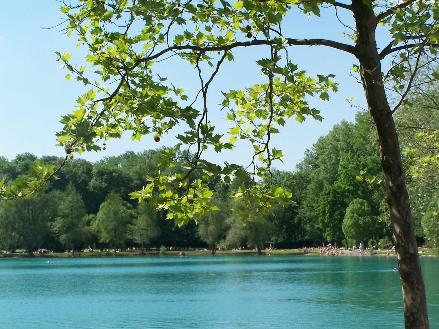 Baggersee zum Baden am Kaiserstuhl