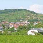 Gästehaus Schätzle in Achkarren Gemeinde Vogtsburg im Kaiserstuhl
