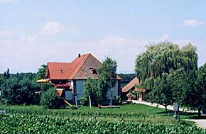 Obsthof NEumühle Familie Sommer Vogtsburg