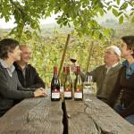 Weingut Schätzle Schelingen