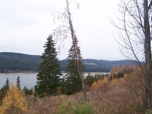 Schluchsee Schwasrzwald