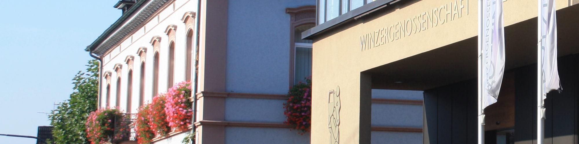 Bötzingen und ie Winzergenossenschaft