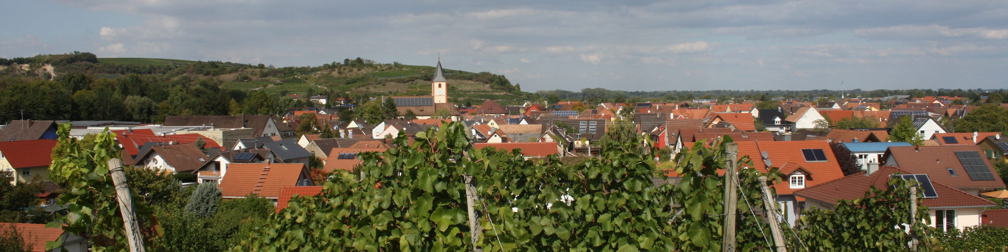 Sasbach mit dem Limberg