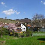 Ferienwohnung Graner in Bickensohl