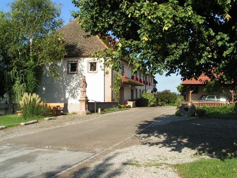 Obsthof neumühle Vogtsburg